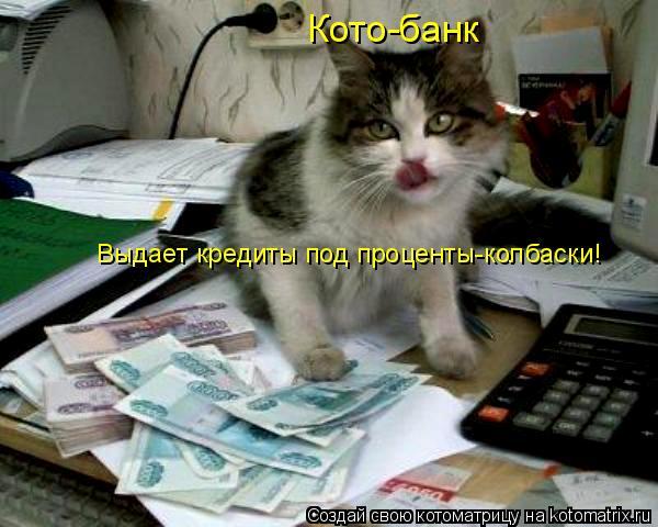 Котоматрица: Кото-банк Выдает кредиты под проценты-колбаски!