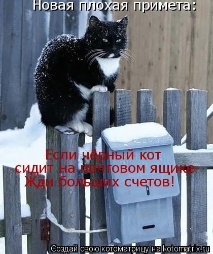 Котоматрица: Новая плохая примета: Если чёрный кот  сидит на почтовом ящике- Жди больших счетов!