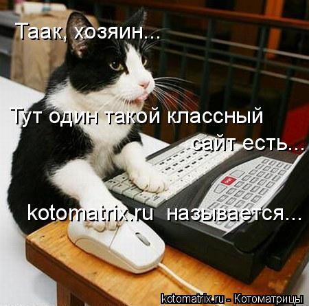 Котоматрица: Таак, хозяин... Тут один такой классный сайт есть... kotomatrix.ru  называется...
