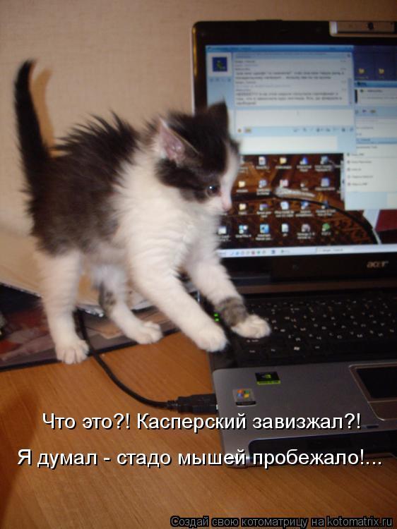 Котоматрица: Что это?! Касперский завизжал?!  Я думал - стадо мышей пробежало!...