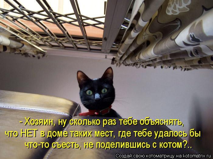 Котоматрица: - Хозяин, ну сколько раз тебе объяснять,  что НЕТ в доме таких мест, где тебе удалось бы  что-то съесть, не поделившись с котом?..