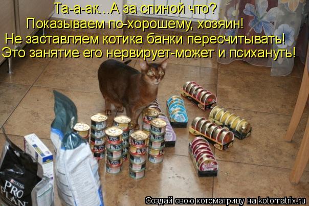 Котоматрица: Не заставляем котика банки пересчитывать! Это занятие его нервирует-может и психануть! Та-а-ак...А за спиной что?  Показываем по-хорошему, хоз
