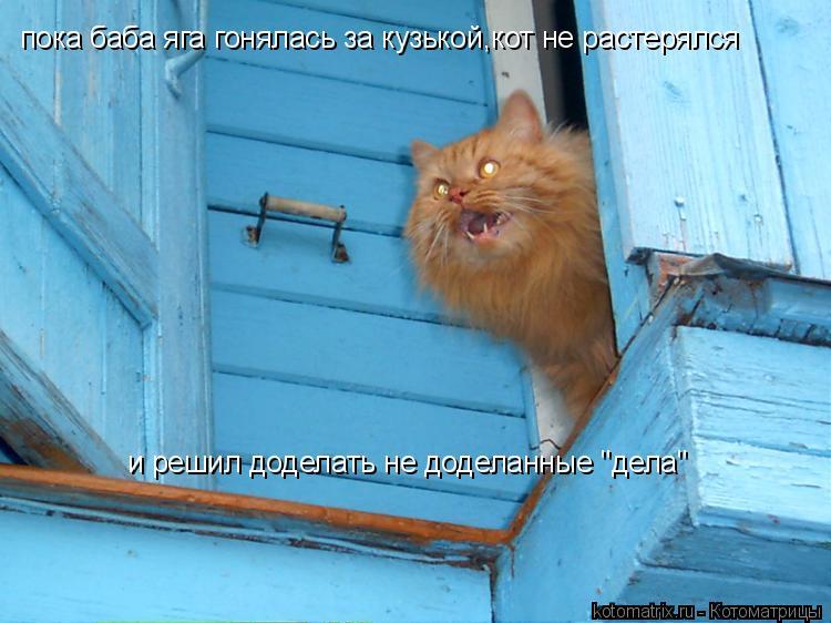 """Котоматрица: пока баба яга гонялась за кузькой,кот не растерялся и решил доделать не доделанные """"дела"""""""