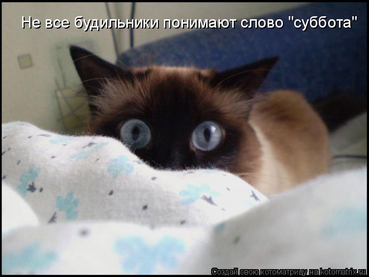 """Не все будильники понимают слово """"суббота"""""""
