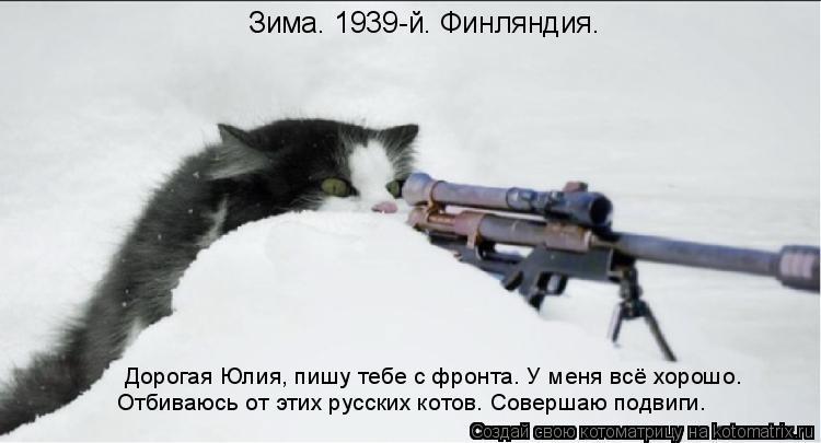 Котоматрица: Зима. 1939-й. Финляндия. Дорогая Юлия, пишу тебе с фронта. У меня всё хорошо. Отбиваюсь от этих русских котов. Совершаю подвиги.