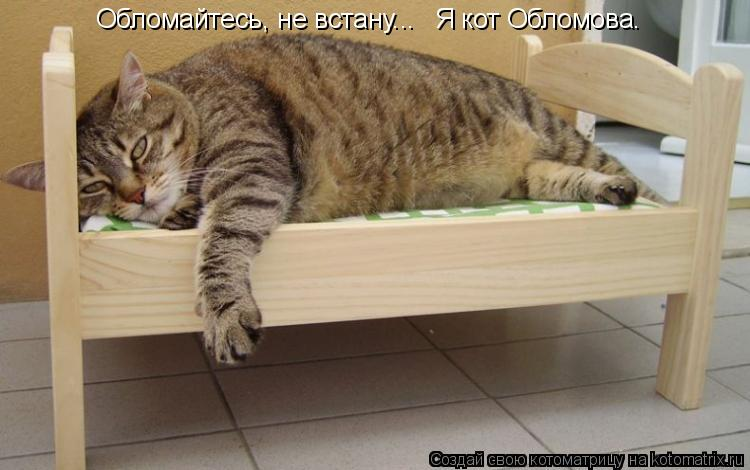 Котоматрица: Обломайтесь, не встану... Я кот Обломова.