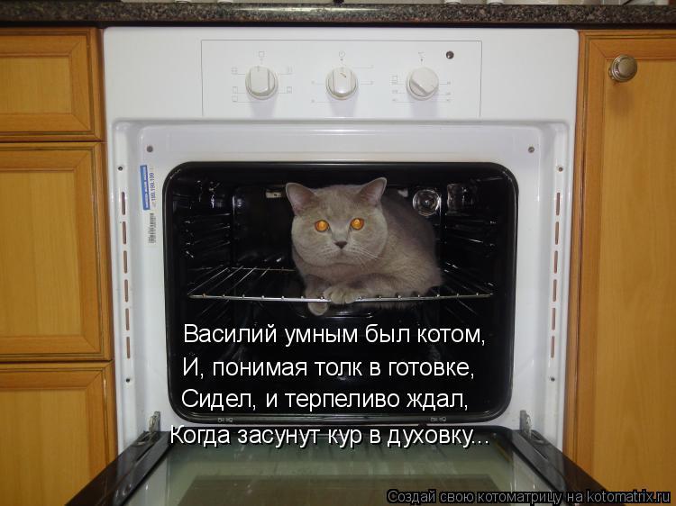 Котоматрица: Василий умным был котом, И, понимая толк в готовке, Сидел, и терпеливо ждал, Когда засунут кур в духовку...