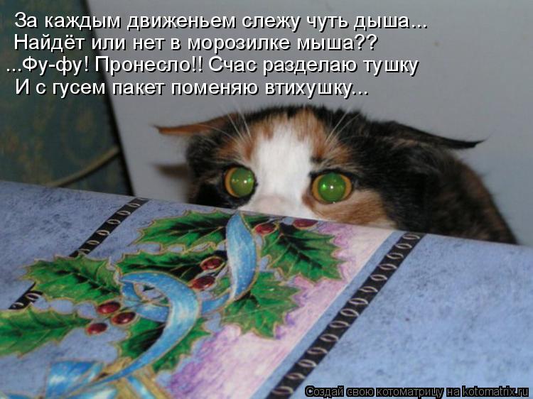 За каждым движеньем слежу чуть дыша... Найдёт или нет в морозилке мыша