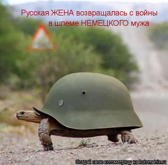 Котоматрица: Русская ЖЕНА возвращалась с войны в шлеме НЕМЕЦКОГО мужа