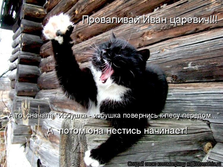 """Проваливай Иван царевич!!! А то ,сначала """"Избушка - избушка повернись"""