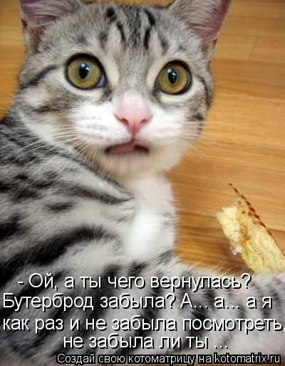 - Ой, а ты чего вернулась? как раз и не забыла посмотреть, Бутерброд з