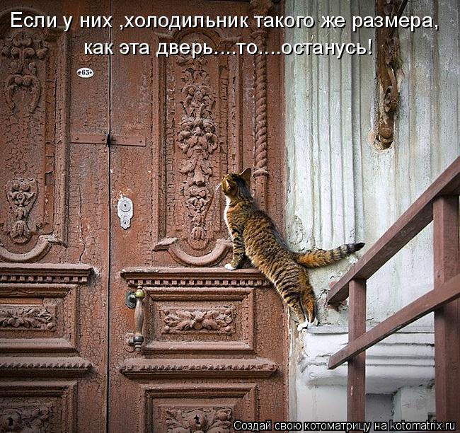 Котоматрица: как эта дверь....то....останусь! Если у них ,холодильник такого же размера,