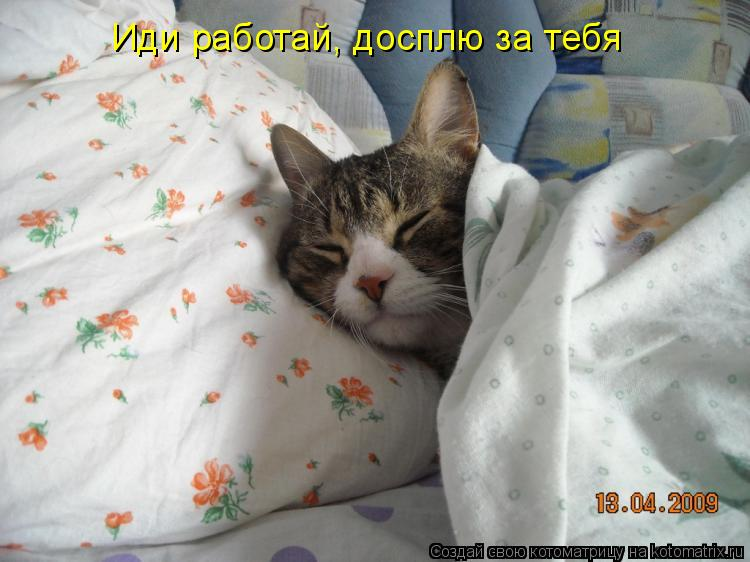 Иди работай, досплю за тебя