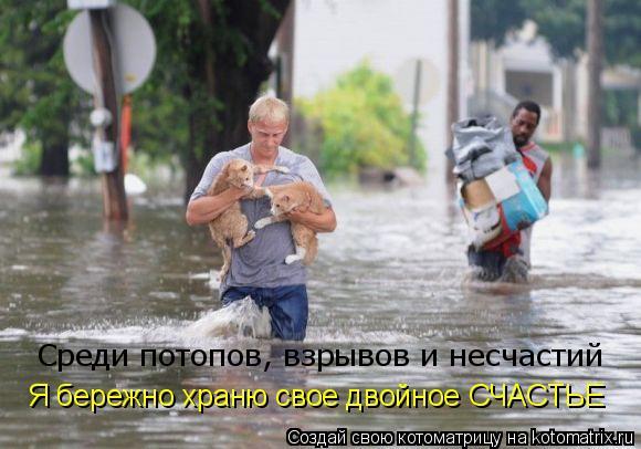 Котоматрица: Среди потопов, взрывов и несчастий Я бережно храню свое двойное СЧАСТЬЕ