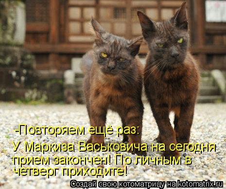 Котоматрица: -Повторяем ещё раз: У Маркиза Васьковича на сегодня  прием закончен! По личным в  четверг приходите!