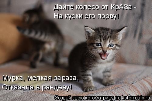 Котоматрица: Дайте колесо от КрАЗа -  На куски его порву!  Мурка, мелкая зараза, Отказала в рандеву!