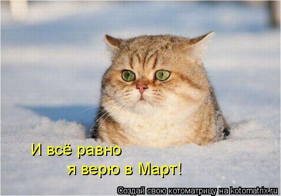 http://kotomatrix.ru/images/lolz/2011/02/15/823756.jpg