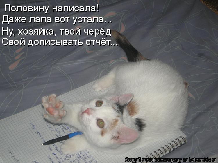 Котоматрица: Половину написала! Даже лапа вот устала... Ну, хозяйка, твой черёд Свой дописывать отчёт...