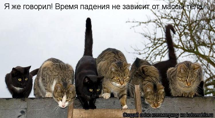 Котоматрица: Я же говорил! Время падения не зависит от массы тела.