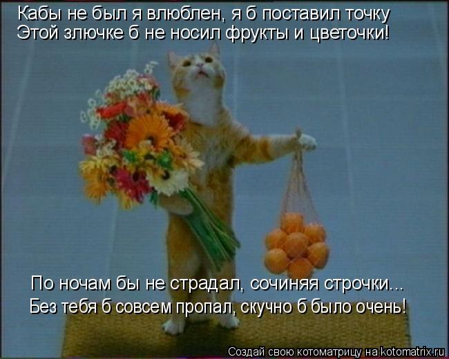 Котоматрица: Кабы не был я влюблен, я б поставил точку Этой злючке б не носил фрукты и цветочки! По ночам бы не страдал, сочиняя строчки... Без тебя б совсем