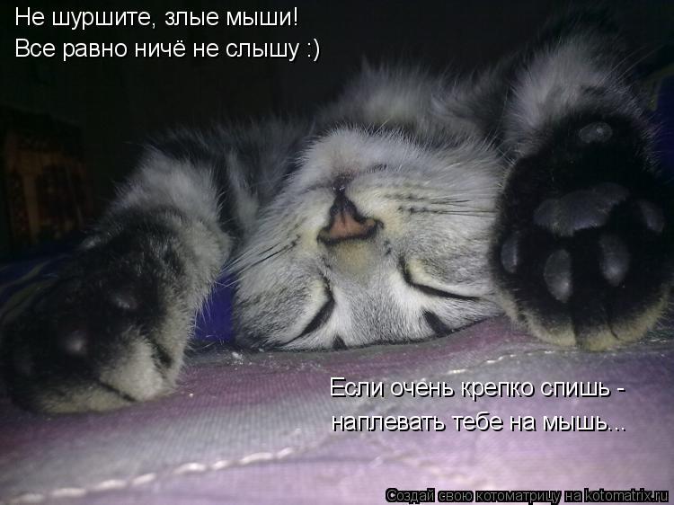 Котоматрица: Не шуршите, злые мыши! Все равно ничё не слышу :) Если очень крепко спишь - наплевать тебе на мышь...