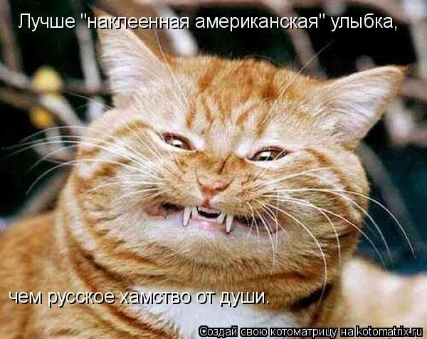 """Котоматрица: Лучше """"наклеенная американская"""" улыбка, чем русское хамство от души."""