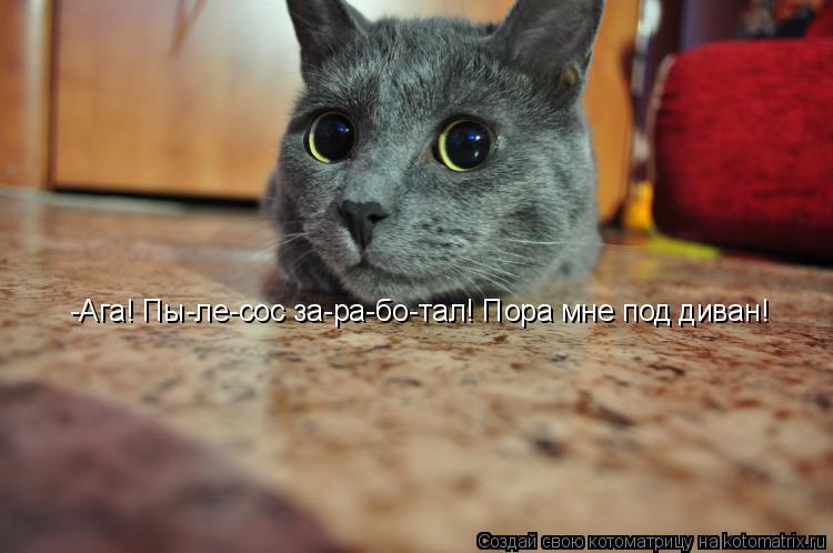 Котоматрица: -Ага! Пы-ле-сос за-ра-бо-тал! Пора мне под диван!