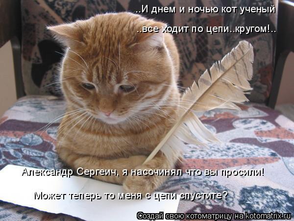Котоматрица: ..И днем и ночью кот ученый ..все ходит по цепи..кругом!.. Александр Сергеич, я насочинял что вы просили! Может теперь то меня с цепи спустите?