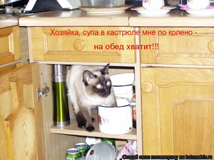 Хозяйка, супа в кастрюле мне по колено - на обед хватит!!!