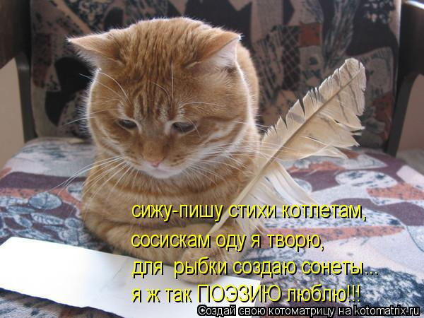 Котоматрица: сижу-пишу стихи котлетам, сосискам оду я творю, для  рыбки создаю сонеты... я ж так ПОЭЗИЮ люблю!!!