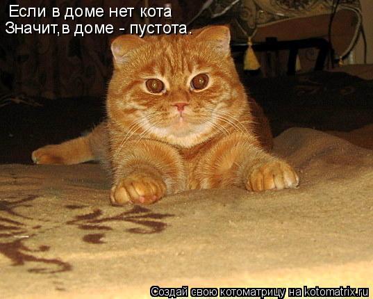 Котоматрица: Если в доме нет кота Значит,в доме - пустота.