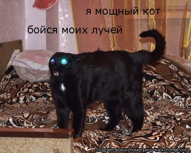 Котоматрица: я мощный кот бойся моих лучей