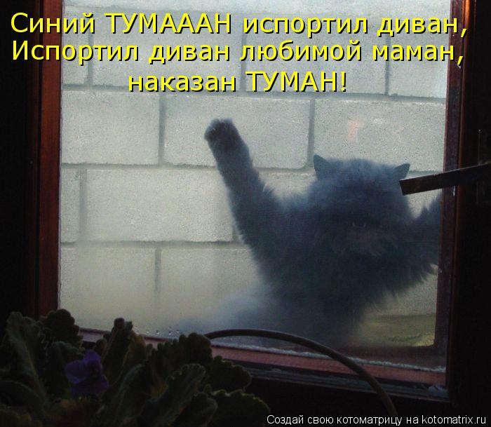 Котоматрица: Синий ТУМАААН испортил диван, Испортил диван любимой маман,  наказан ТУМАН!