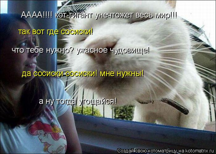Котоматрица: АААА!!!! кот-гигант унечтожет весь мир!!! так вот где сосиски! что тебе нужно? ужасное чудовище! да сосиски сосиски! мне нужны! а ну тогда угощай