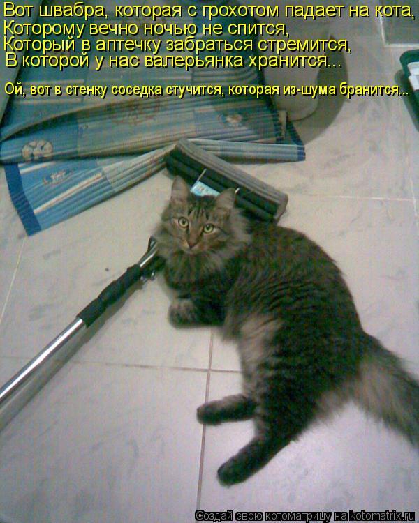 Котоматрица: Вот швабра, которая с грохотом падает на кота, Которому вечно ночью не спится, Который в аптечку забраться стремится, В которой у нас валерь