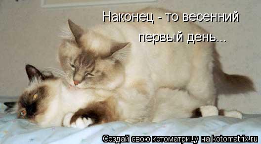 http://kotomatrix.ru/images/lolz/2011/02/18/827292.jpg