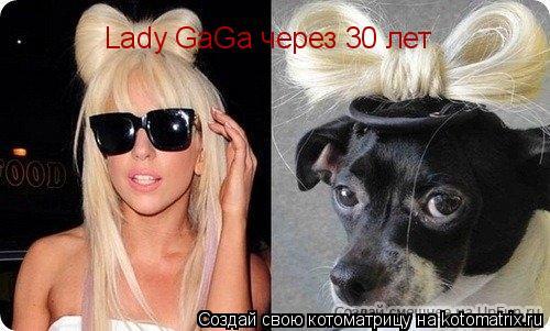 Котоматрица: Lady GaGa через 30 лет