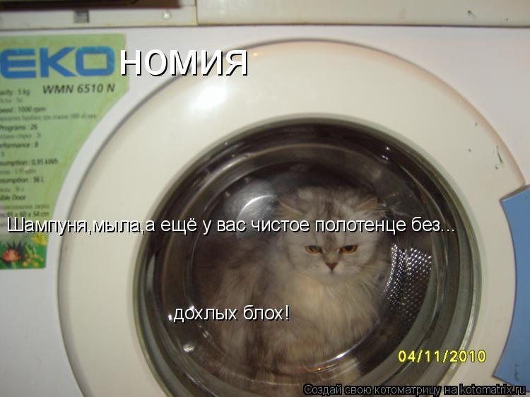 Котоматрица: номия Шампуня,мыла,а ещё у вас чистое полотенце без... дохлых блох!