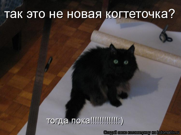 Котоматрица: так это не новая когтеточка? тогда пока!!!!!!!!!!!!:)