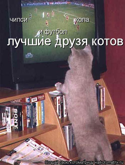 Котоматрица: чипси                          кола и футбол лучшие друзя котов