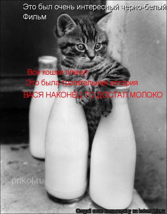 Котоматрица: Это был очень интересный черно-белый  Фильм Все кошки плачут Это была трогательная история ВАСЯ НАКОНЕЦ ТО ДОСТАЛ МОЛОКО