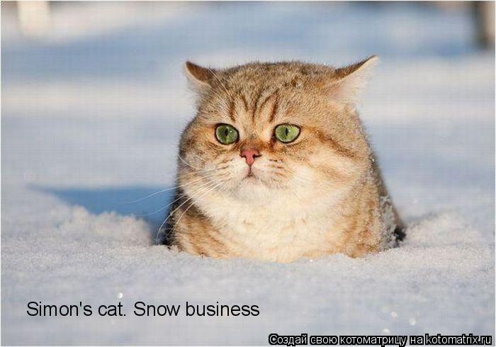 Котоматрица: Simon's cat. Snow business