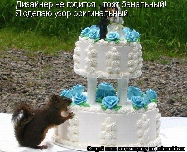 Котоматрица: - Дизайнер не годится - торт банальный! Я сделаю узор оригинальный...