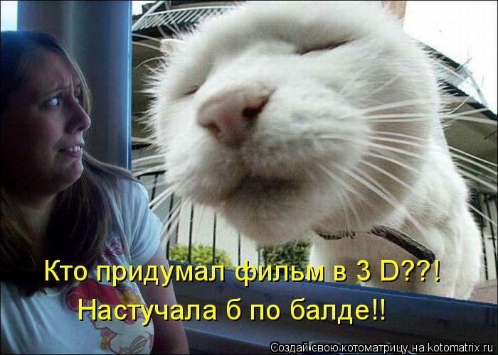 Котоматрица: Кто придумал фильм в 3 D??! Настучала б по балде!!