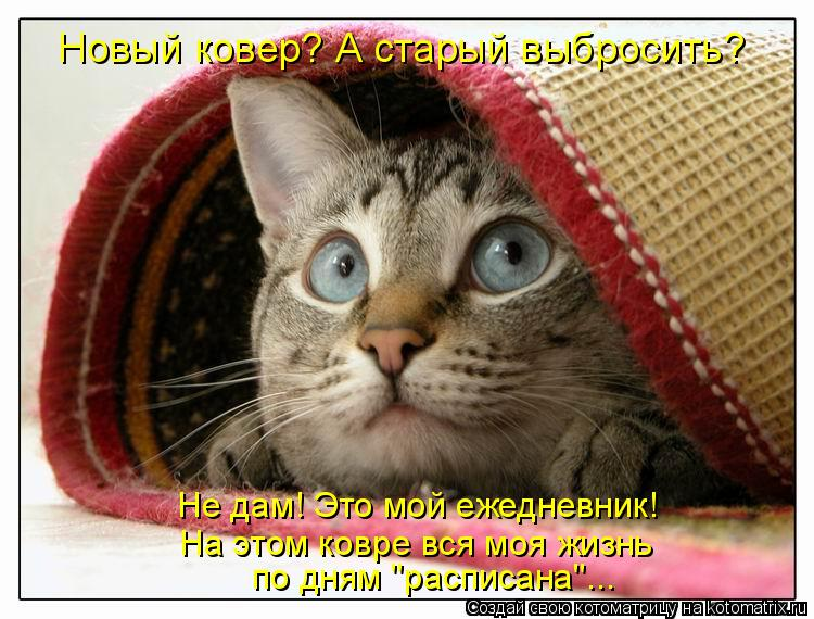 http://kotomatrix.ru/images/lolz/2011/02/19/828517.jpg