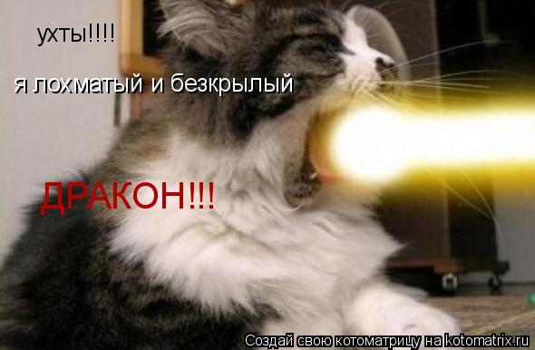 Котоматрица: ухты!!!! я лохматый и безкрылый ДРАКОН!!!