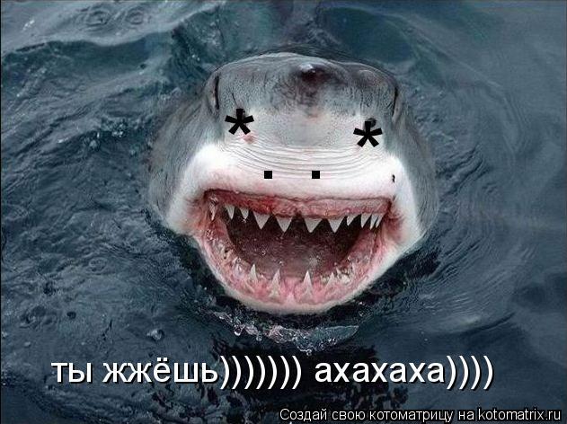 Котоматрица: * * . . ты жжёшь))))))) ахахаха))))