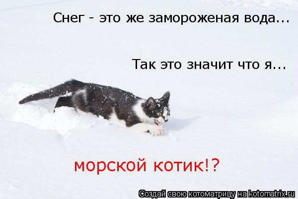 http://kotomatrix.ru/images/lolz/2011/02/19/828925.jpg