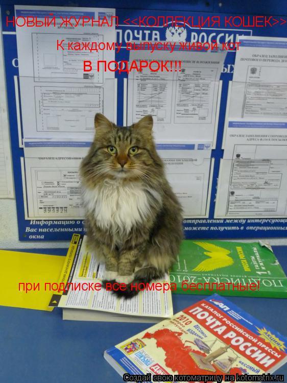 Котоматрица: НОВЫЙ ЖУРНАЛ <<КОЛЛЕКЦИЯ КОШЕК>> К каждому выпуску живой кот В ПОДАРОК!!! при подписке все номера бесплатные!