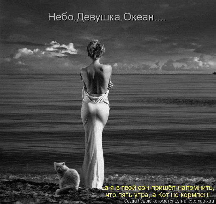 Котоматрица: Небо.Девушка.Океан.... -а я в твой сон пришёл напомнить, что пять утра, а Кот не кормлен!